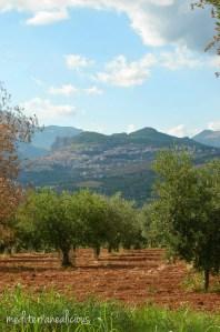 Saracena panoramic view