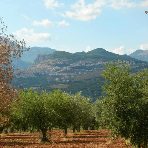 Saracena panoramic view