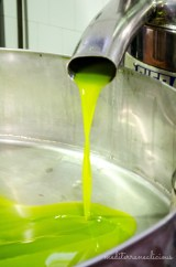 olive oil mill 5
