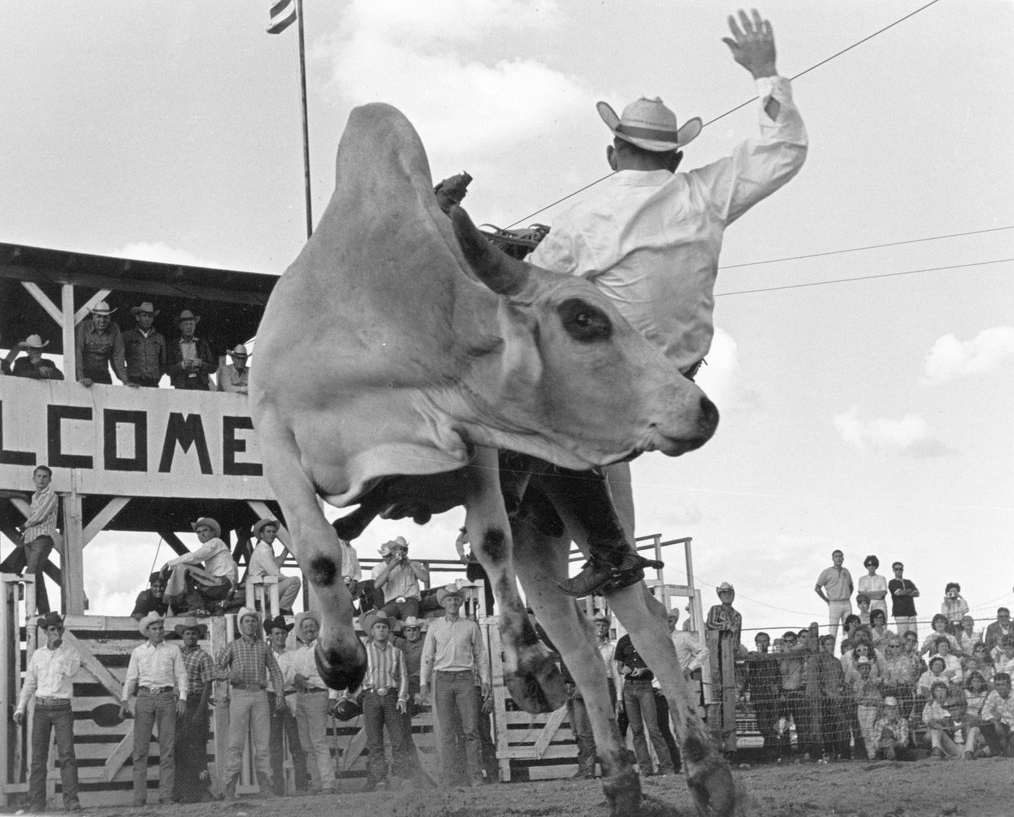 Glen Adair. Sonoita, Arizona. 1964. Louise Serpa :: Courtesy Tucson Rodeo Committee