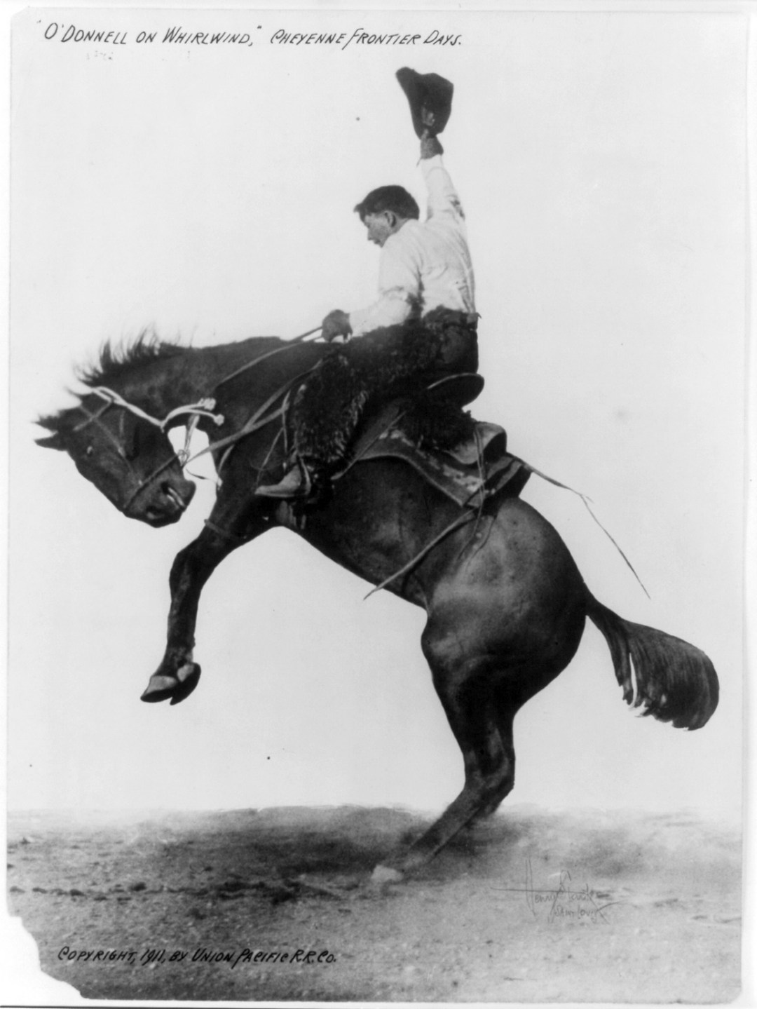 Bucking Bronco :: O'Donnell on Whirlwind :: Cheyenne Frontier Days - 1911