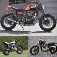 Fresh Triumphs From Mule Motorcycles