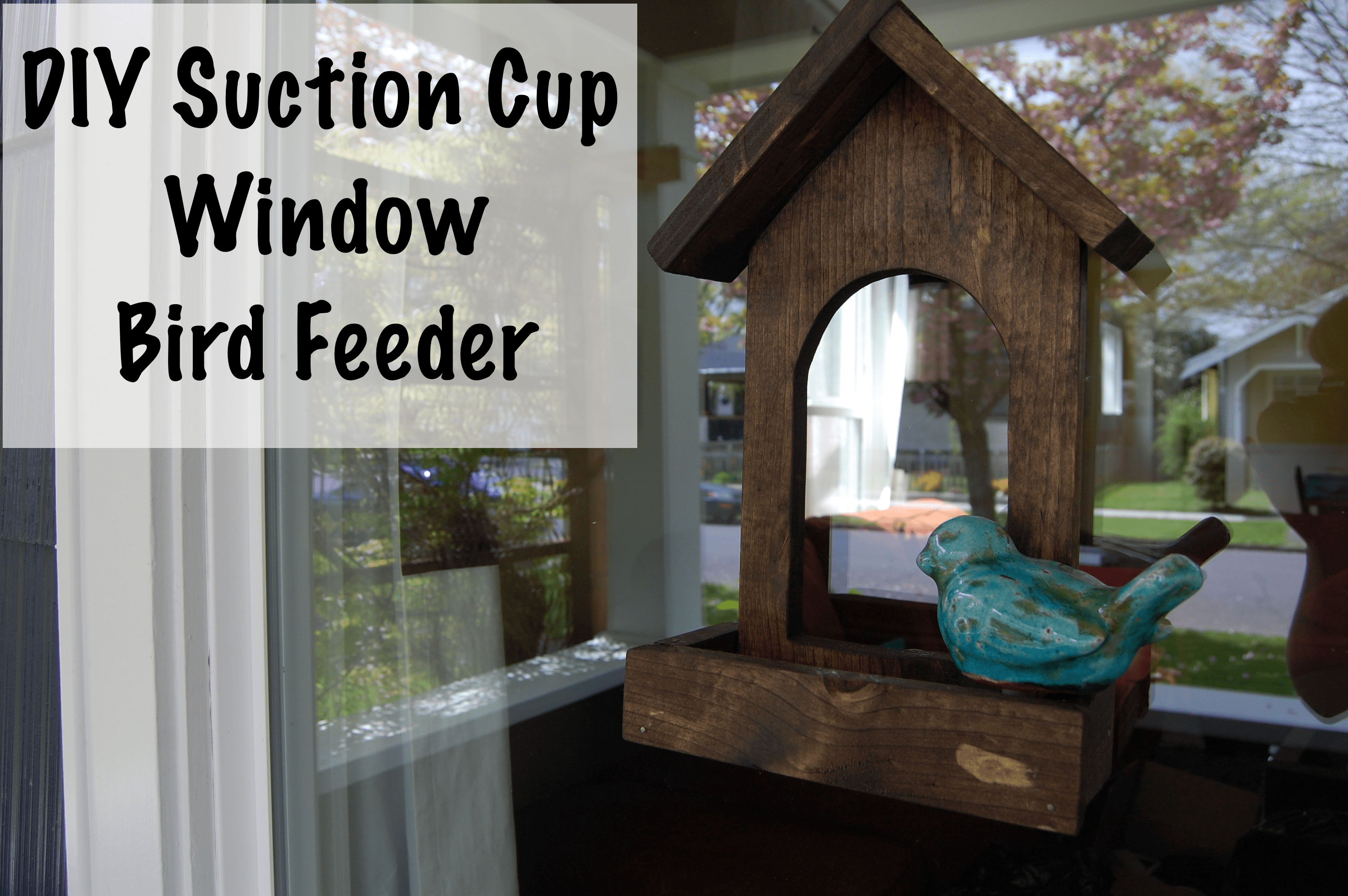 Suction cup window bird feeder