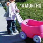 14 Months