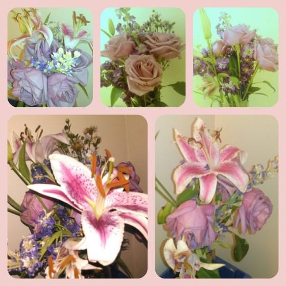 Flowers After 1 week #Sponsored