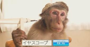 Endoscópio Windows para remoção de cera de ouvido. Sim, Japão.