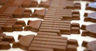Seis meses depois, apenas 8,5% dos Androids rodam KitKat