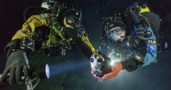 Esqueleto de 12 mil anos sugere que o homem migrou para a América apenas uma vez