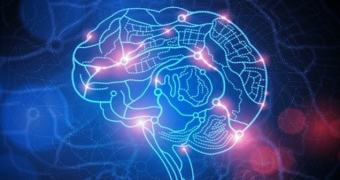 DARPA investe 37 milhões de dólares em equipamento para recuperação da memória