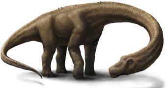 Dreadnoughtus, um dinossauro estupidamente grande