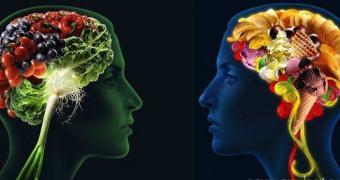 Seu cérebro sabe que aquilo é altamente calórico