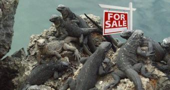 Lizard Squad lança ferramenta (paga) de ataques DDoS