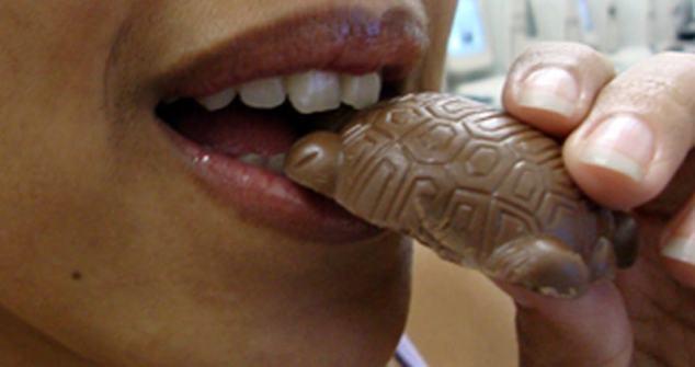 Laguna_Tortuguita_de_chocolate