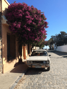 Wandering through the quaint, little town of Colonia, Uruguay.