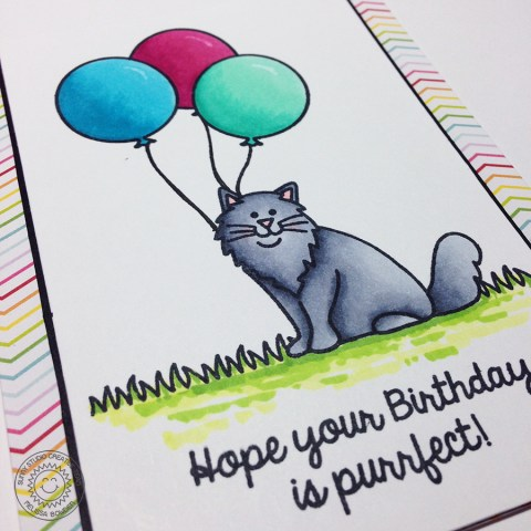 Purrfect Birthday Sneak Peek