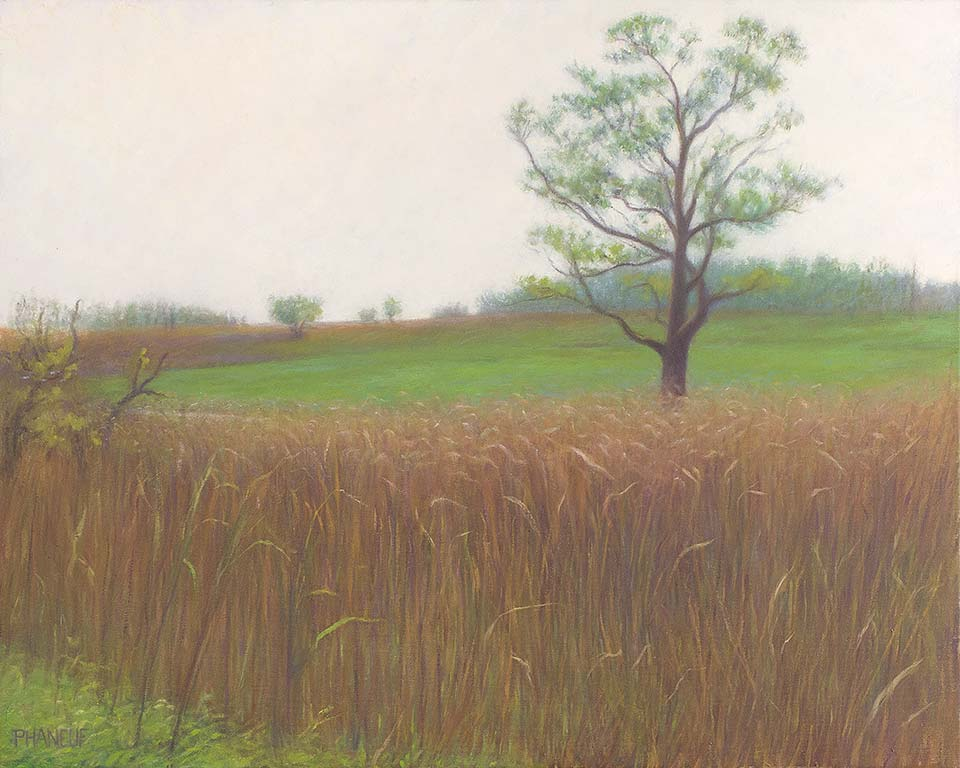 HC-224-moor-grass-phaneuf-bristol-ri-landscape-painting-960w