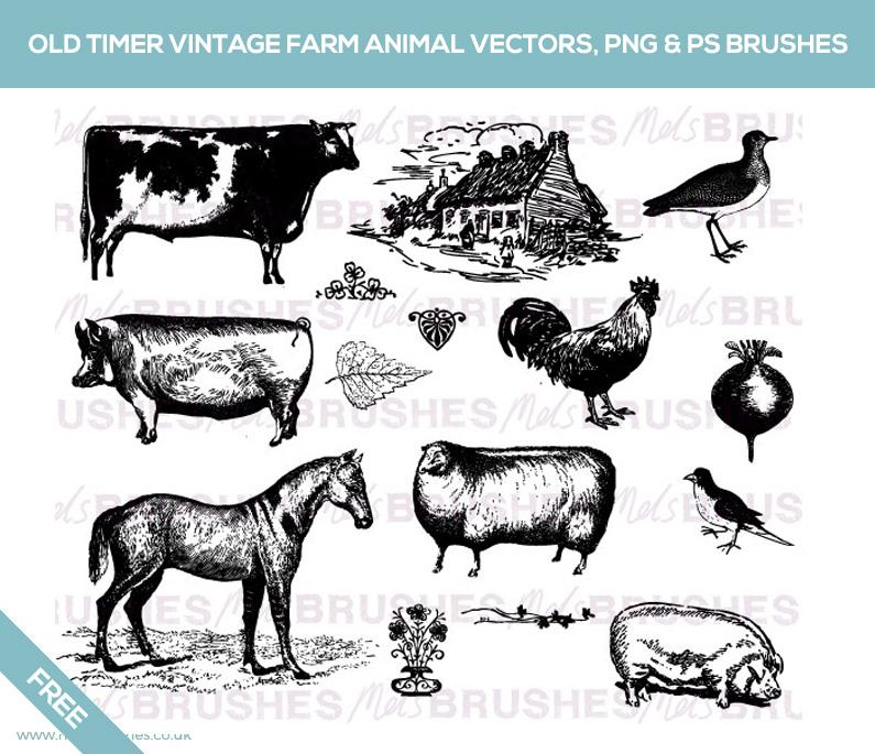 Free Old Timer Vintage Farm AnimalVectors, PNG  Photoshop brushes
