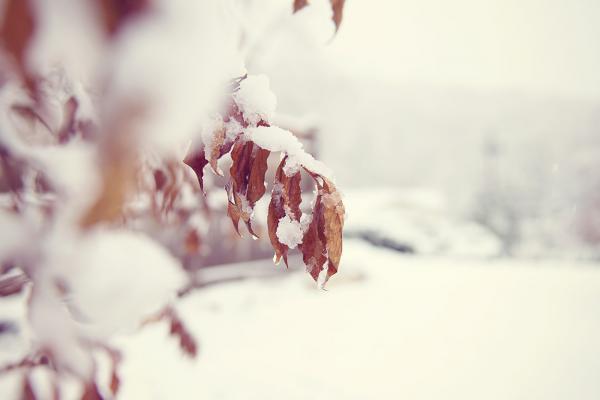 US_winter_01