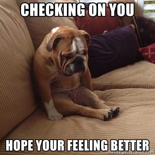 Checking on you Hope your feeling better - sad dogs Meme Generator