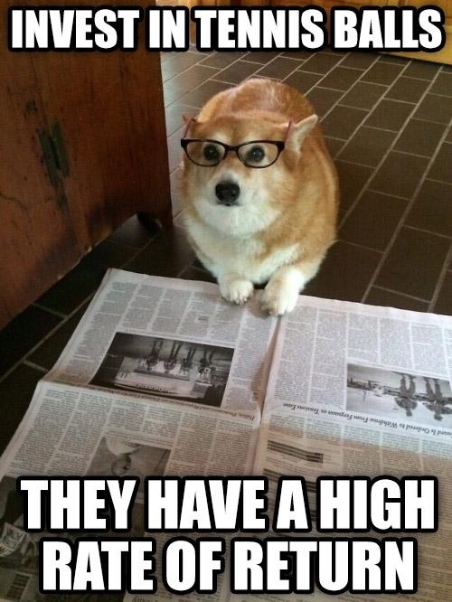 Girl Good Morning Wallpaper Business Dog Meme Guy