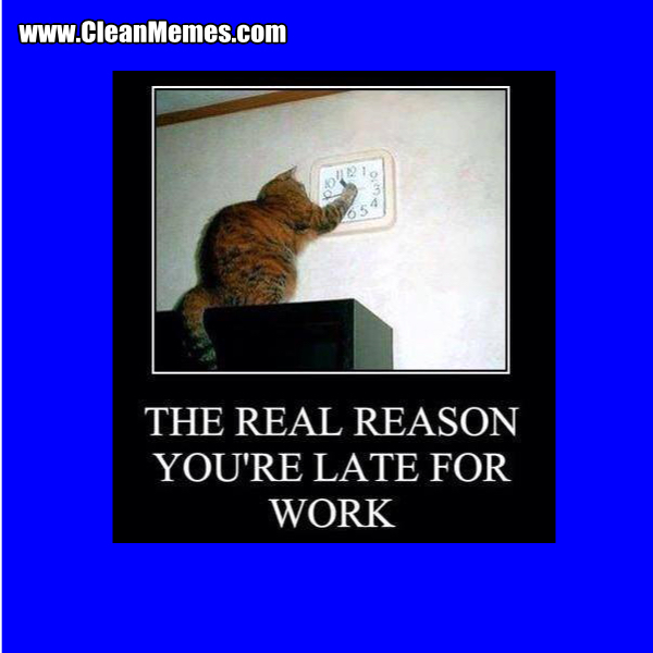 Funny Memes 2015 About Work : Funny meme my day page