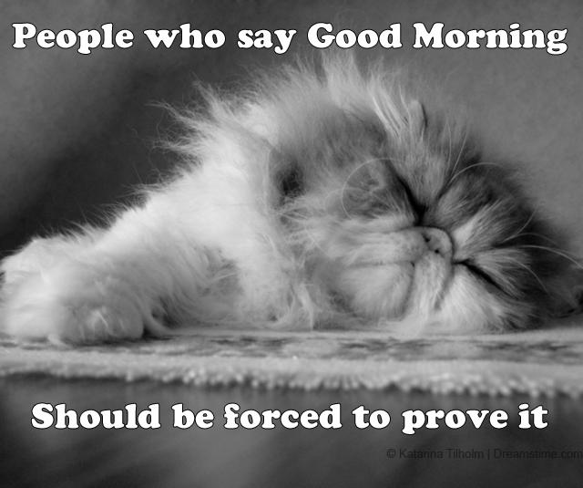 Good Morning Meme For Work : Good morning meme quotes