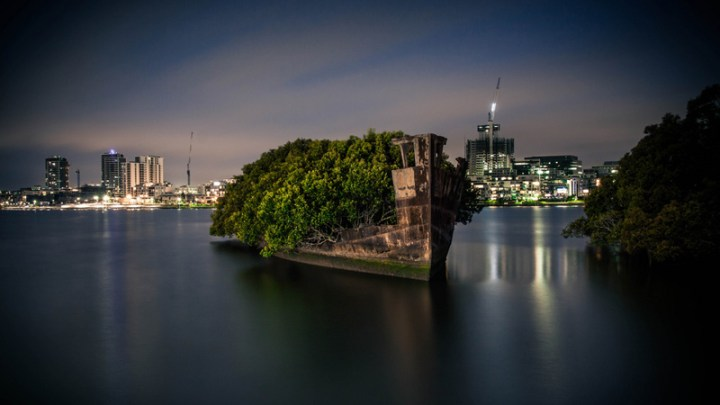 102-year-old ship became a floating forest (6 pictures)