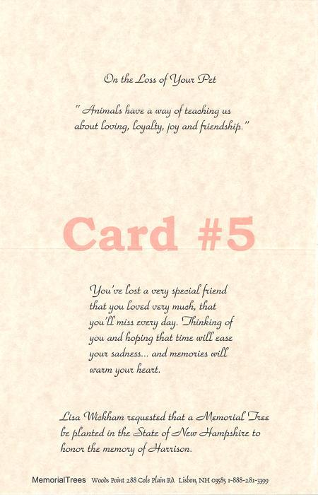 Sample Sympathy Cards - Memorial Trees - condolence sample note