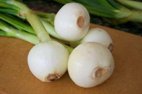 Cipolle al forno (raw)