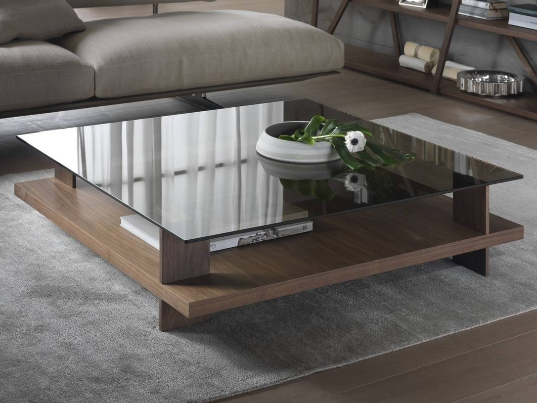 Low Coffee Table With Storage 15 Collection Of Low Coffee Table With Storage