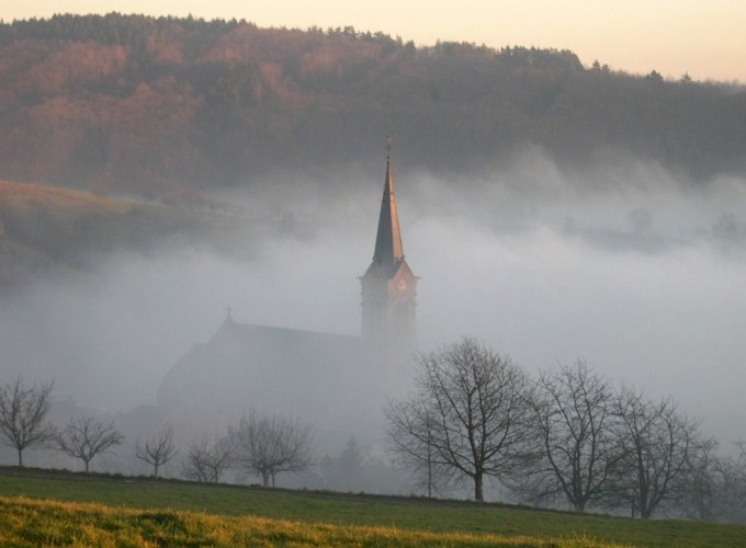 dans-le-brouillard