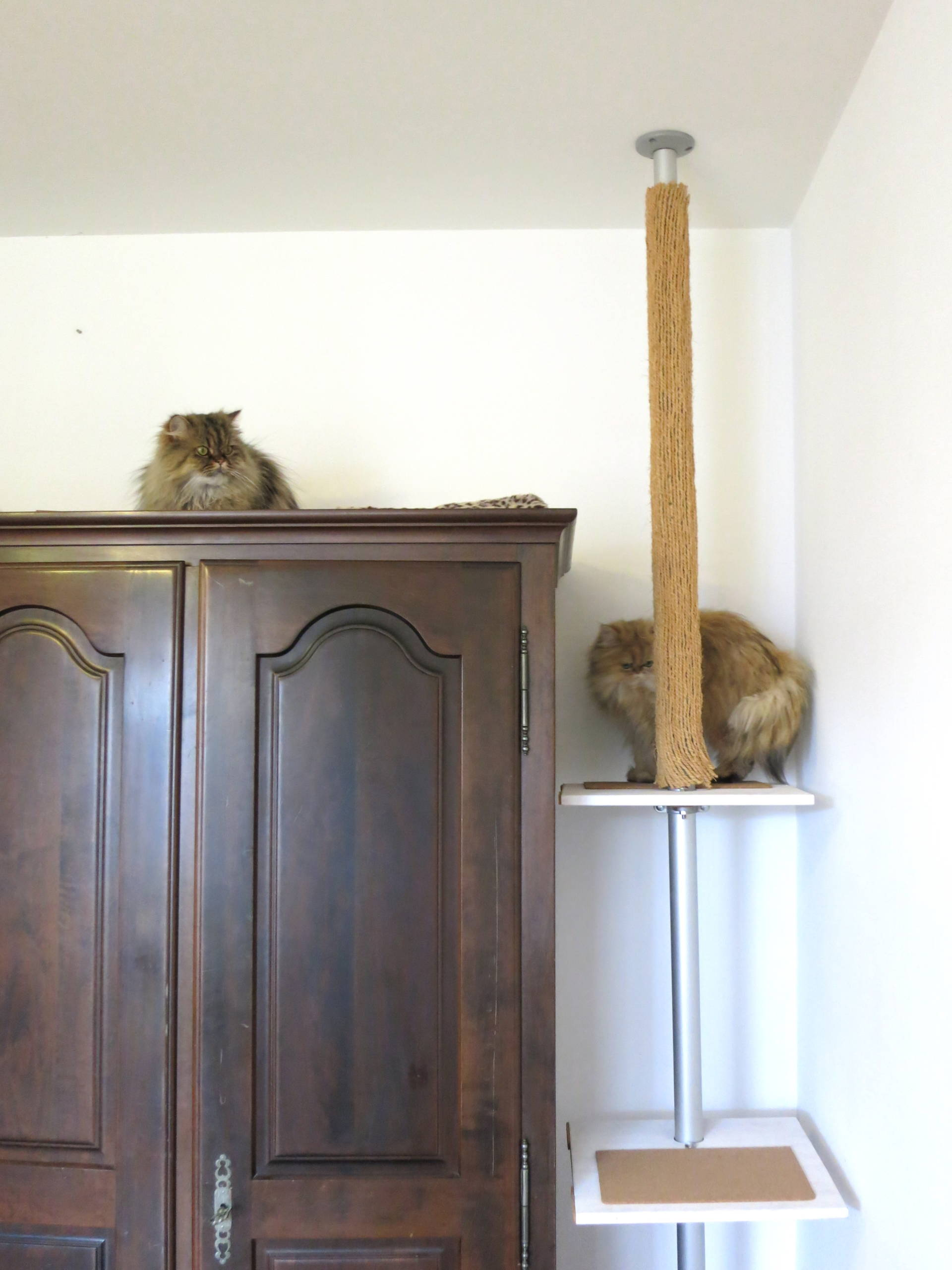 Dressing Ikea Stolmen Ikea Stolmen Cat Tree Todoityourself