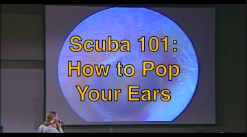 Scuba Basics:  How to Pop Ears When Diving