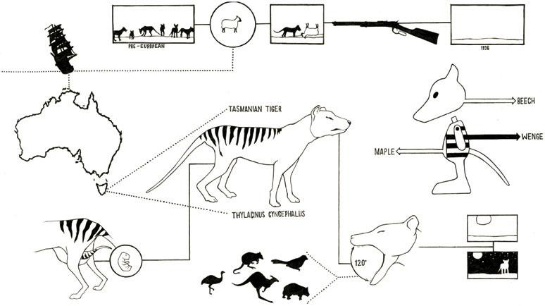 03-toys_extinct_animals