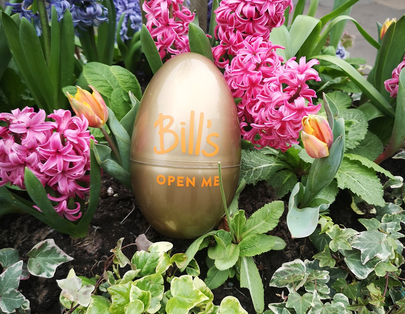 Easter Egg Join Bill S Easter Egg Hunt And Win A 100 Meal Mermaid Quay