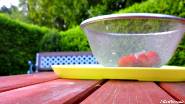 fraises-saladier