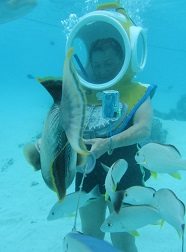 Tourist of all ages can enjoy the wonders of ocean floor.
