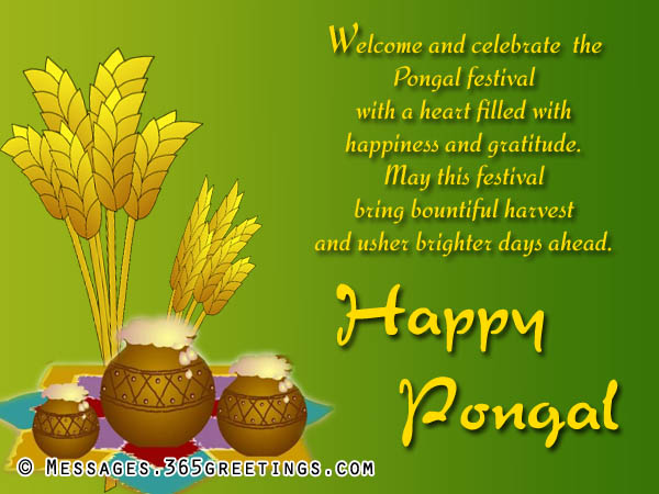 Tagalog Love Quotes Wallpaper Free Download Happy Pongal Greetings 365greetings Com