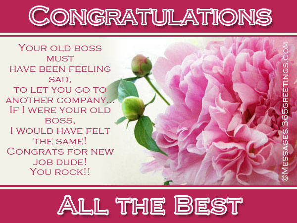 Congratulation Messages for New Job - 365greetings