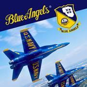 Mise à jour du PlayStation Store du 27 novembre 2017 Blue Angels Aerobatic Flight Simulator