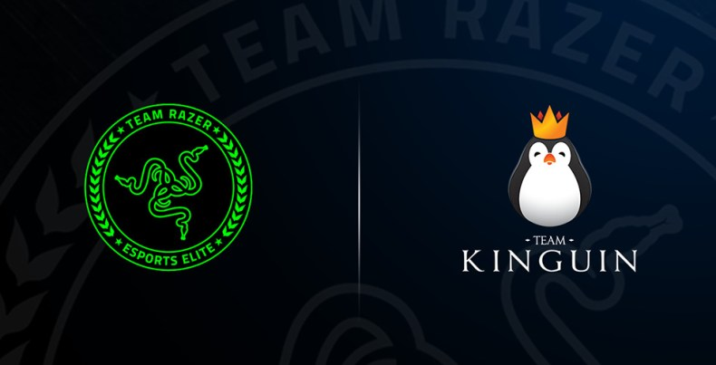 razer team kinguin