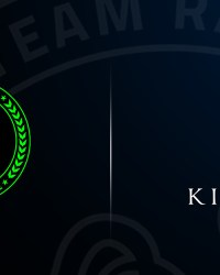 razer team kinguin