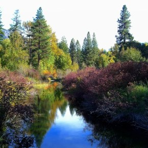Fall colors have arrived in the Methow Valley. Photo by Laurelle Walsh