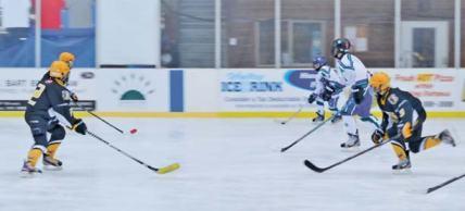38-HockeyRefer_8103-p