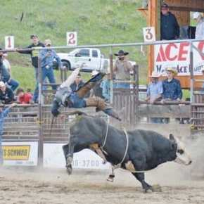 Labor Day Rodeo back in the arena after one-year absence