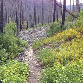 North Cascades trails open