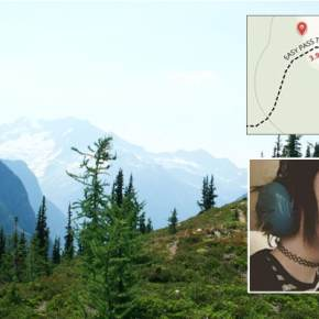 Teen walks out of N. Cascades after surviving plane crash