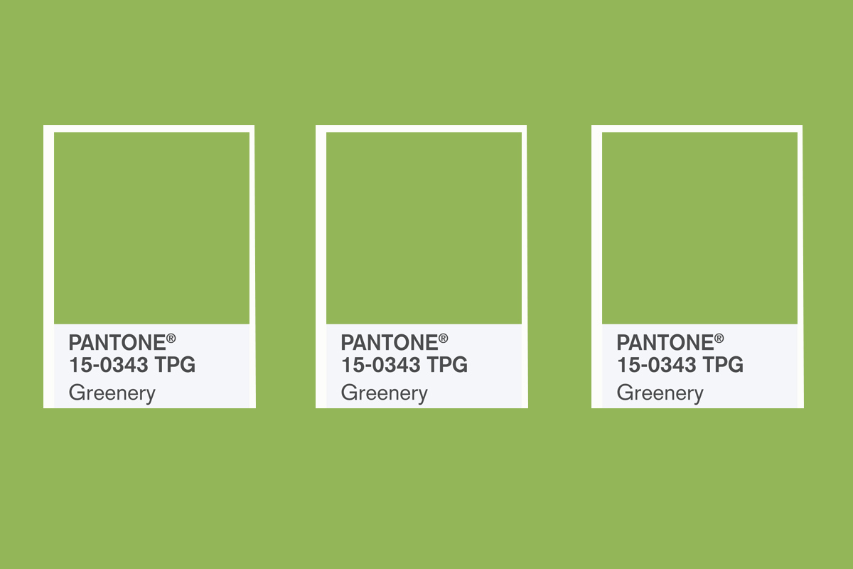 Pantone 2017 Pantone Has Announced Its 2017 Colour Of The Year Metro News
