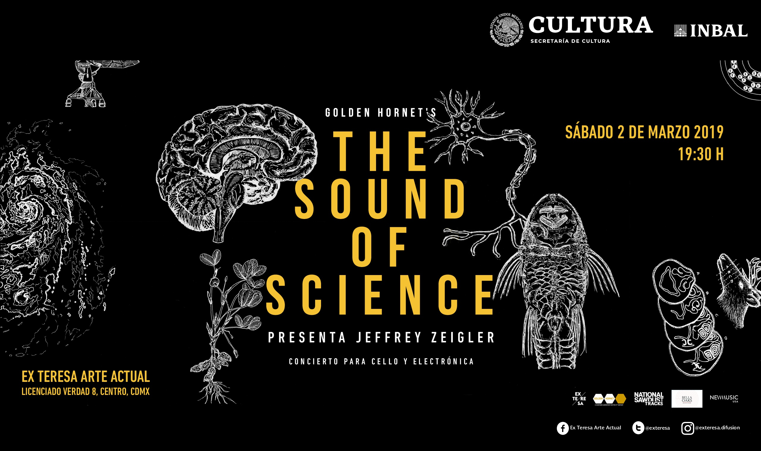 Ex Teresa Arte Actual The Sound Of Science