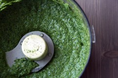 Image result for pesto mixer